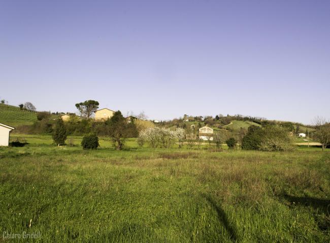 Eccocasa case e appartamenti in vendita e affitto a for Case in vendita riviera romagnola
